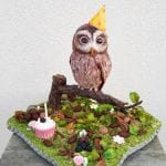 3D owl cake, this cake was requested for a 30th birthday party. hes vanilla sponge . covered in white sugar paste then airbrushed. Everything on the board is edible. even his little party hat.